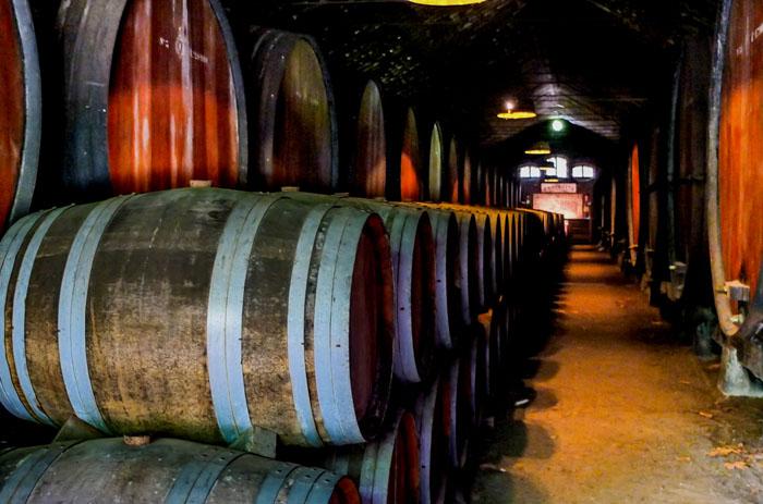 Der Weinkeller von José Maria da Fonseca