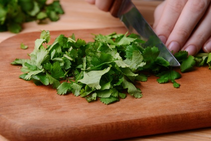 Chopped cilantro on wooden board close-up